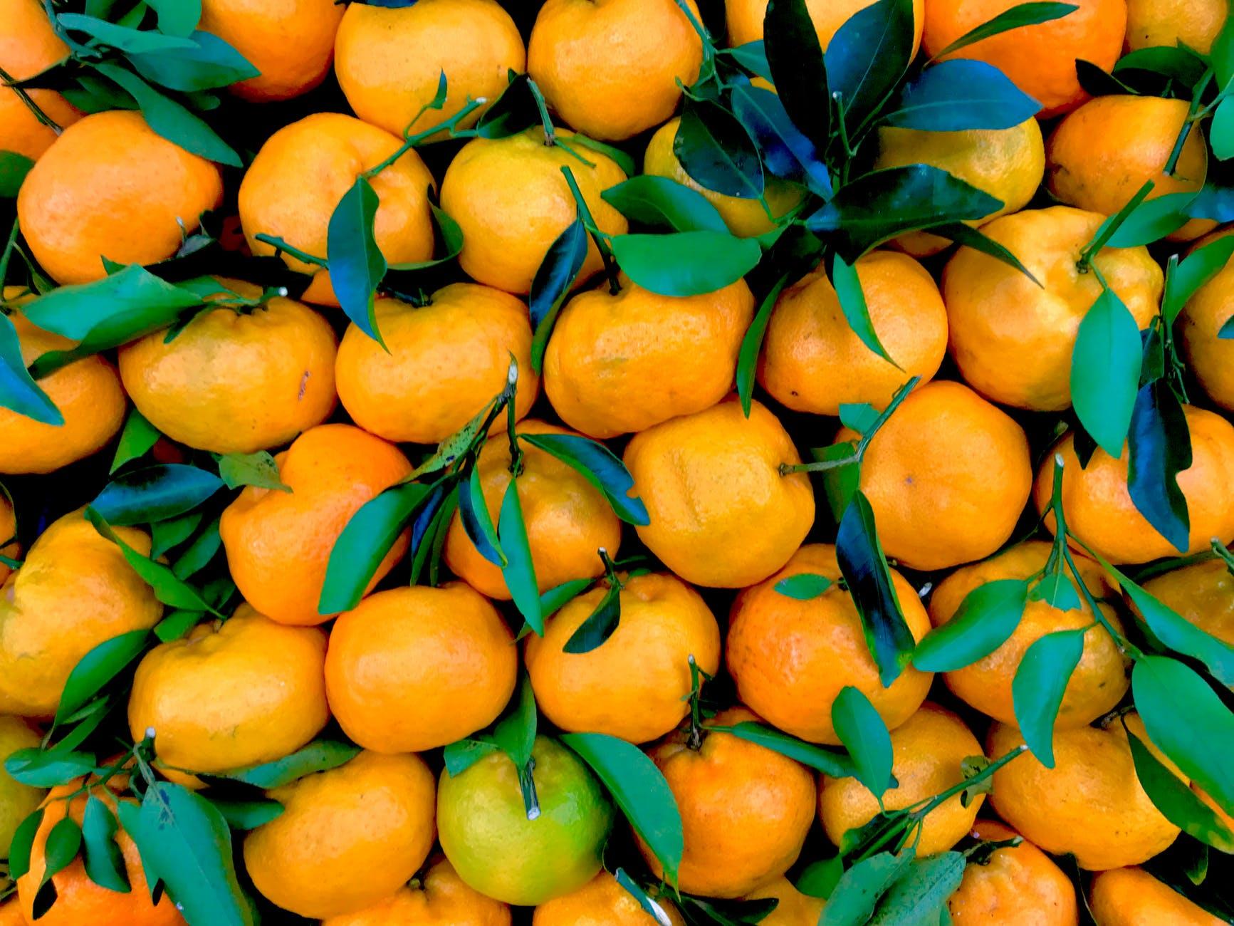 Ce fructe mâncăm iarna - 3