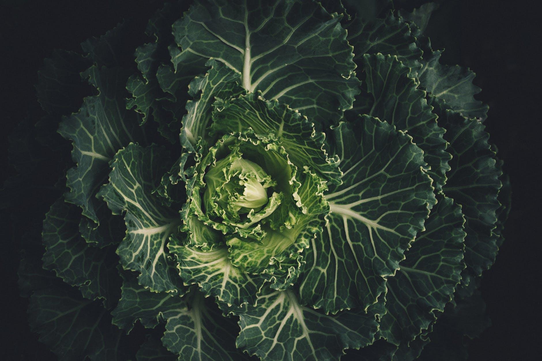 6 mituri demontate despre fructe și legume - 4