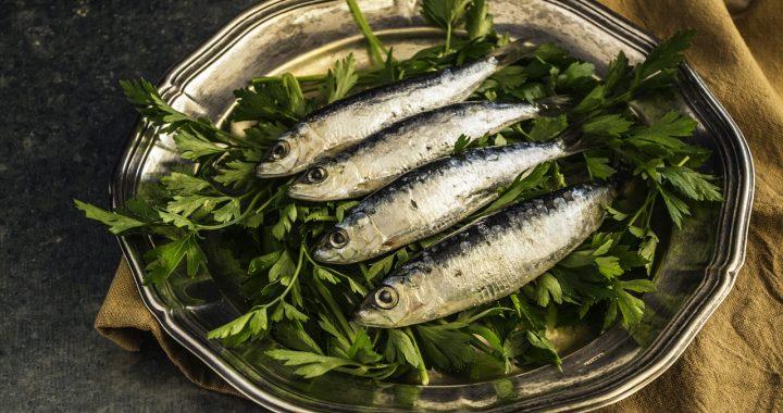 sardine pentru creier sănătos