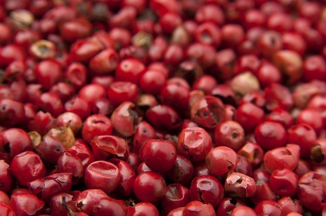 Goji - fructul longevității - 1