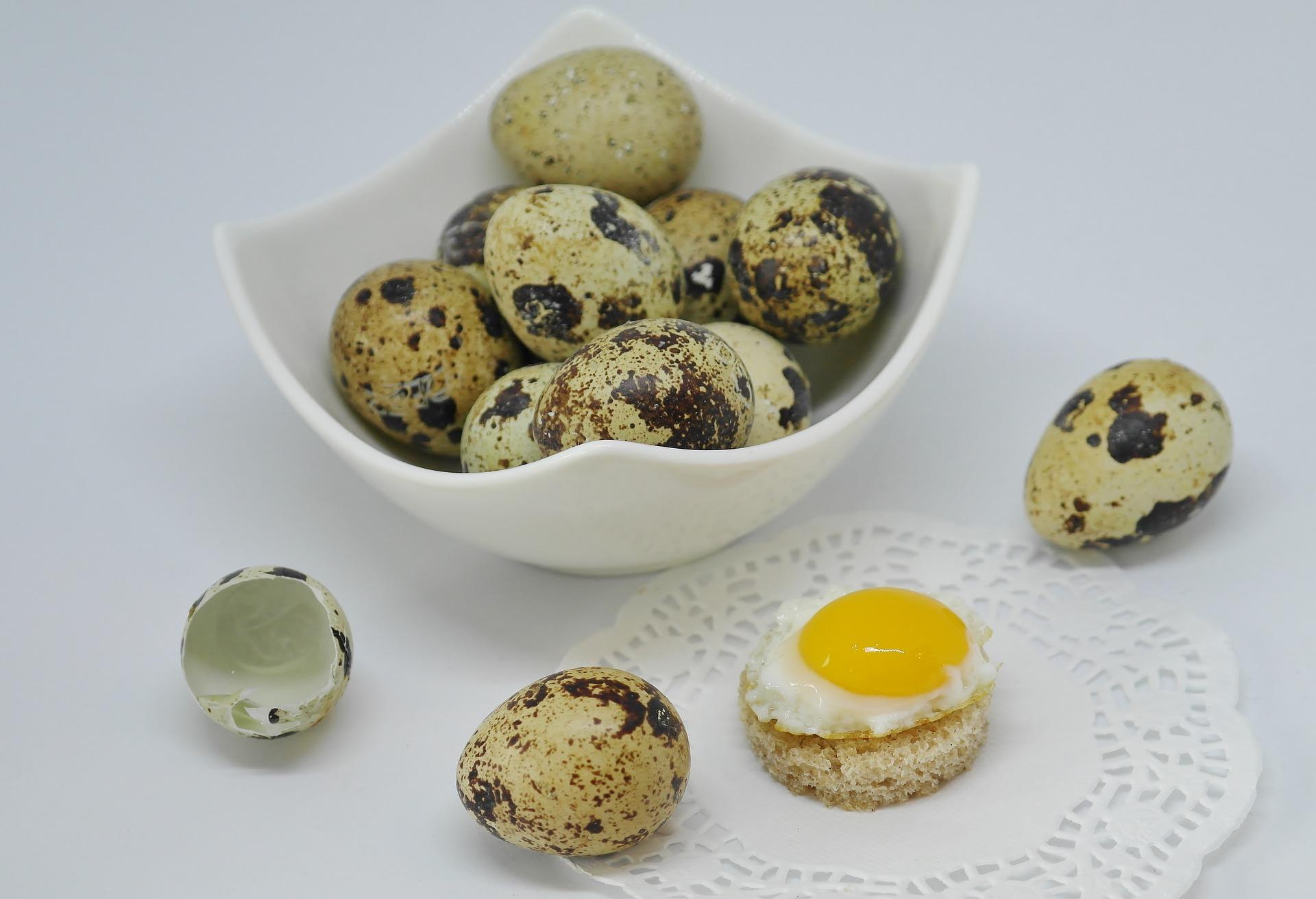 ouăle de prepeliță îmbunătățesc vederea
