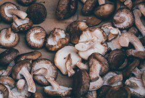 Ciuperci shiitake organice