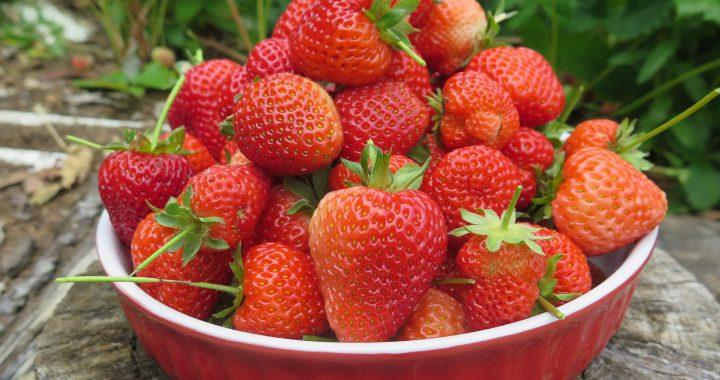 12 beneficii pentru sănătate ale căpșunilor - 1