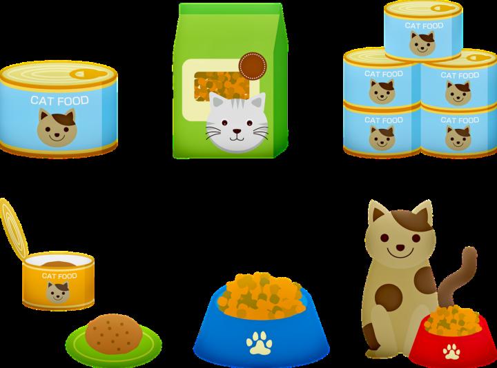 Alimente toxice și periculoase pentru pisici - 2