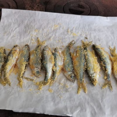 Peștele pe plită sau prăjeala acceptată de nutriționiști